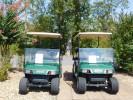 hot-springs-rentals-golf-carts